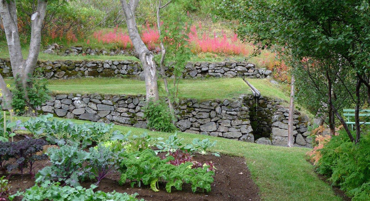 La spiga d 39 oro serata domande e risposte orto e giardino - L orto in giardino ...