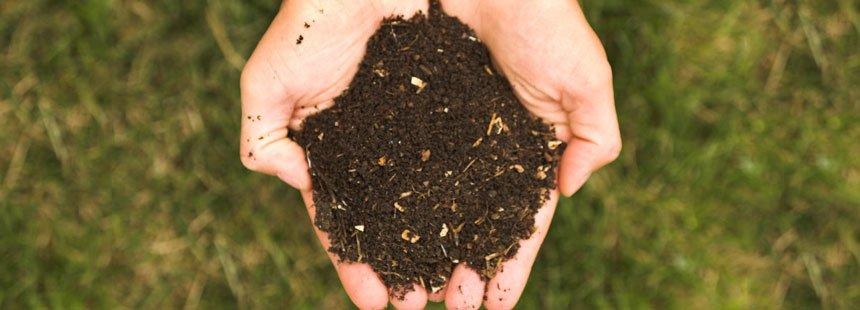 Il cumulo biodinamico. o compost - Terra Nuova
